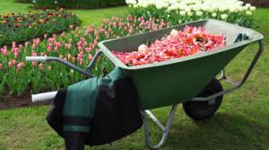 onderhoud_tuin_voorjaar